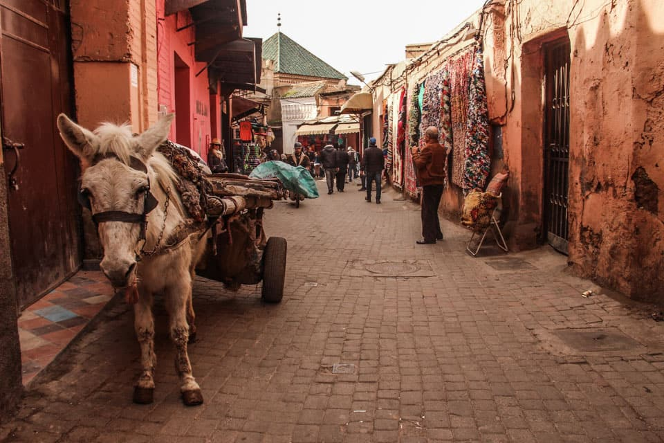road trip organised morocco